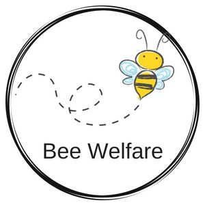 Bee Welfare ethical harvesting