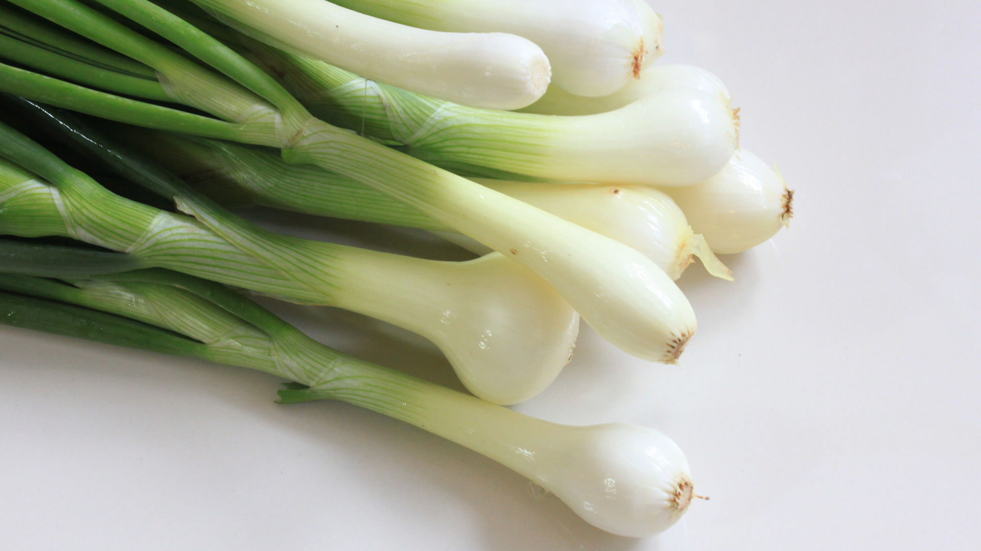 Spring Onion for chewing when teething